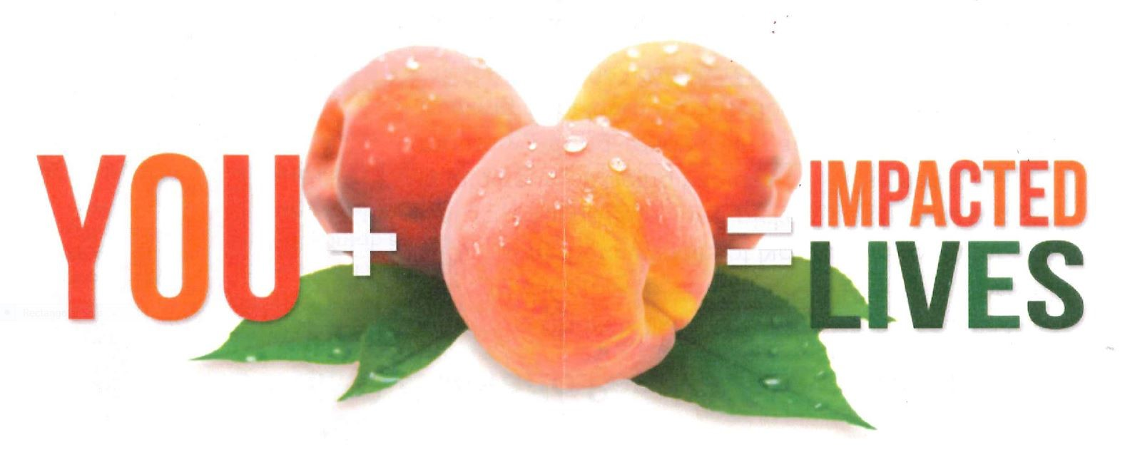 Junior League Peaches Graphic
